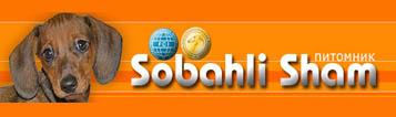 Щенки стандартной гладкошерстной таксы из питомника Sobahli… психикой и породным темпераментом. Осуществляем вязки такс.