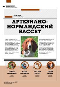 DOG_РР_бассет